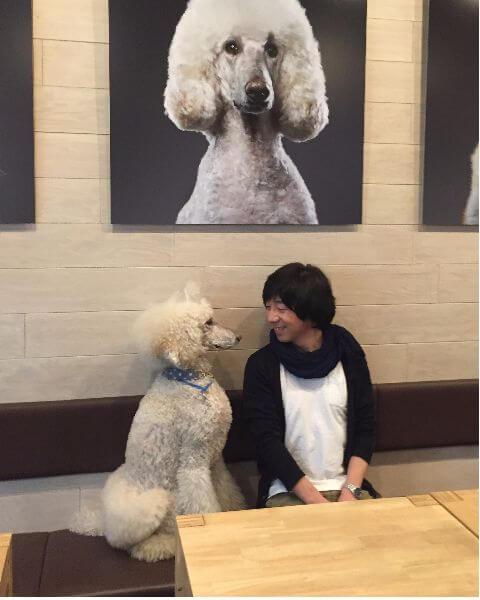 内山慎吾,柴犬